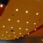 Потолок в зале встреч и приемов